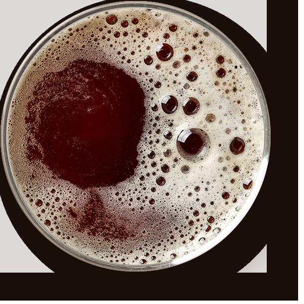 http://aocervejeiro.com.br/wp-content/uploads/2017/05/beer_transparent.png